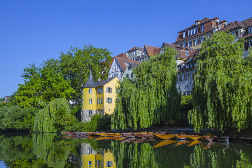 Tueblingen See